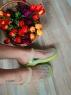 Женские резиновые сабо салатовые 781-1 LSHI
